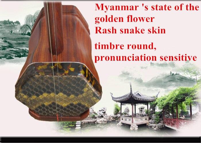 Chine professionnel erhu haute qualité dunhuang Rouge bois de santal erhu Facile jouer avec arc et dur cas envoyer livre musical instrument