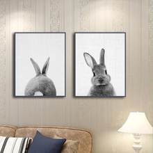 Black White Baby Animal Rabbit Tail Canvas Art Print and Poster Nursery Bunny Canvas Painting for Kids Room Nordic Wall Decor(China)
