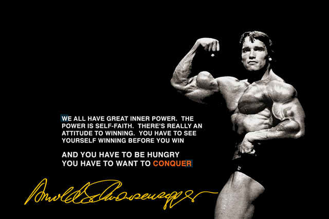 Arnold Schwarzenegger Bodybuilding Quotes Conquer Motivational EX339 Living  Room Home Wall Art Decor Wood Frame Fabric