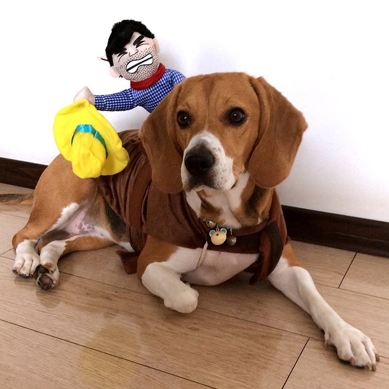 pet dog riding horse dog cowboy costume halloween cowboy funny costumes dog riders clothes dog halloween party clothing s xl in dog coats jackets from