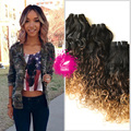 9A Peruvian Curly Hair Wet And Wavy Hair Water Wave 1 Bundle Ombre Human Hair 1B/4/27 Ombre Hair Extensions Water Wave