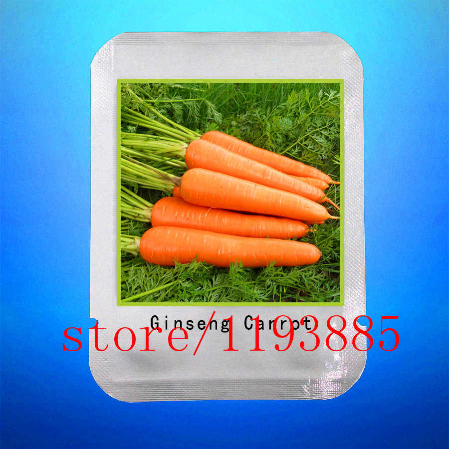 300 CARROT SEEDS Five Inches Carrot seed, good taste ,yard or potted fruit vegetable seeds for home garden professional makeup