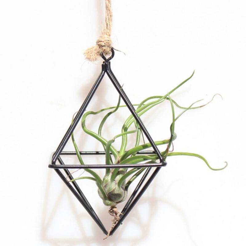 Hanging Tillandsia Air Plants Rack Metal Geometric Iron Art Flower Planter Pot Gardening Accessories Home Office Decoration TQ line art