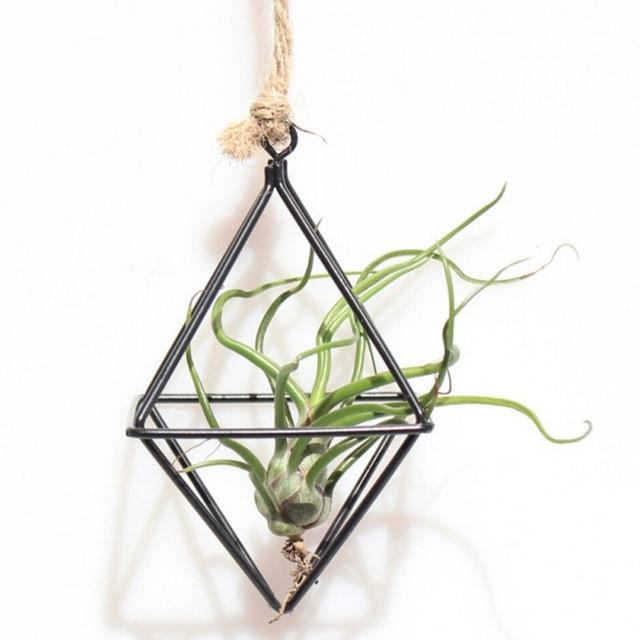 Hanging Tillandsia Air Plants Rack Metal Geometric Iron Art Flower Planter  Pot Gardening Accessories Home Office
