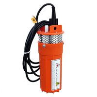 Stainless Strainer Submersible 12V DC Solar Well Pump Water Pump