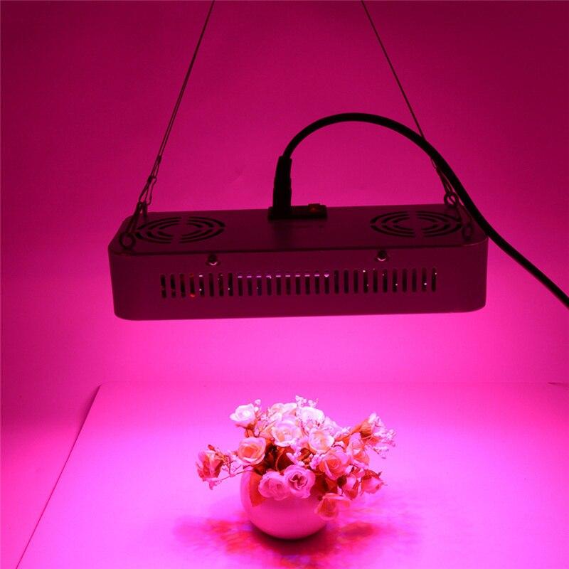 GERUITE 600 W Led élèvent la lumière Led à spectre complet lampe de croissance de plante 2,940-3, 360LM pour la floraison de plante de serre élèvent la lumière d'intérieur