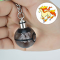 Rapidash Novelty Mini Portable Pokemon Go Engraving Round 3D Crystal Glass Ball LED Keychain Colorful Pendant Child Christmas