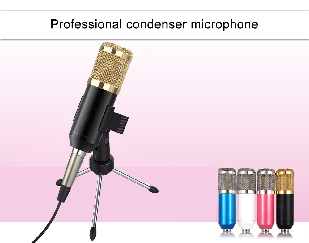 bm 800 microphone 1