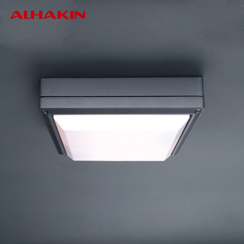 Alhakin Waterproof Ceiling Light Aluminum Pc E27 2pcs Led Bulbs Luminaria Led Bathroom Balcony