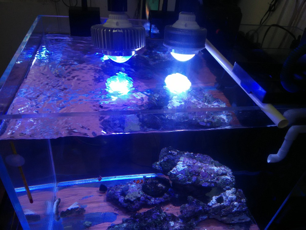 Customized Colors CREE LED Aquarium Light Grow Lamp Plant Fish tank lampe for Marine Coral Reef Light Fishes