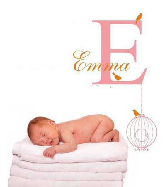 Customer made girl name wall decal baby shower gift sticker customer made girl name wall decal baby shower gift sticker personalized bird cage customized monogram negle Image collections
