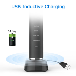 Image 3 - Electric Toothbrush USB Inductive Charging Sonic Toothbrush Adults Electric Sonic toothbrush Black 8 Brush Heads & Travel Case