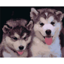 Two puppies animal painting by numbers