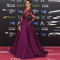 Top Quality Customized Sexy Sheer Tulle Crystal Beads Long Sleeve Purple Evening Gown Hot Red Carpet Celebrity Dresses 2017