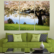 New design pictures! Free shipping 3panel of big pink cherry tree and glass for living Room decoration without frame F298(China)