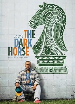《黑马》2014年新西兰剧情电影在线观看