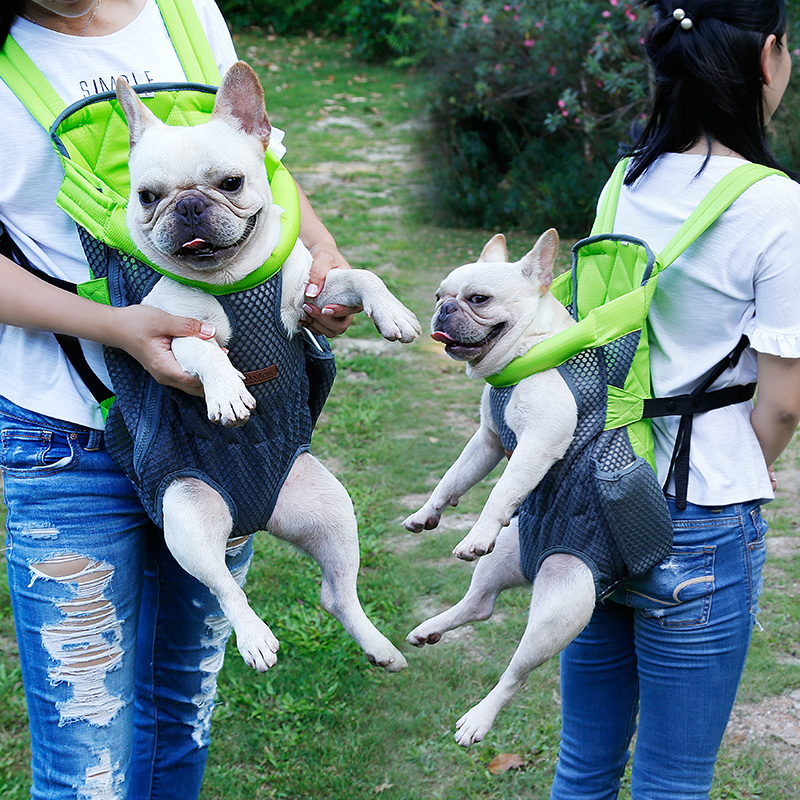 Puppy Dog Carrier Backpack 15