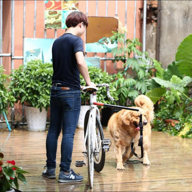 Laisse rétractable main libre chiot chien de compagnie laisse de vélo entraînement exercice pôle laisse mains libres chien laisse accessoire pour animaux de compagnie