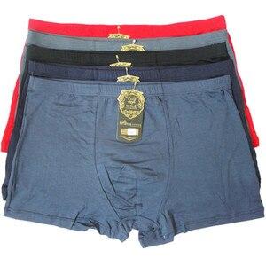 Image 1 - Fasion High Quality Bamboo Underwear Men XL XXL XXXL XXXXL 5XL 6XL 7XL Size Men Boxer Underwear Plus Size Flat Feet Panties