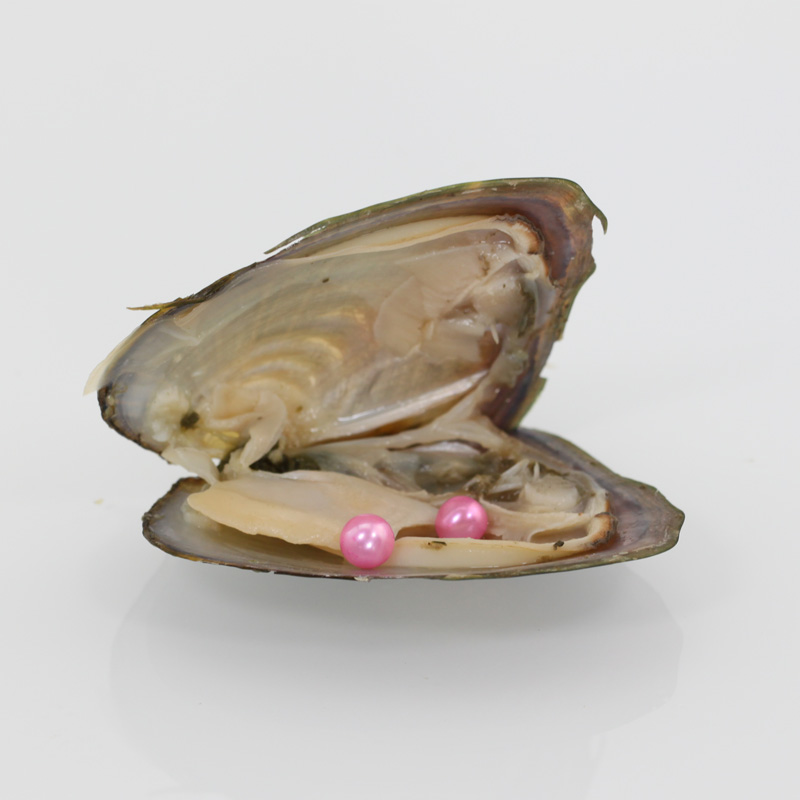 7-8MM Double Pearls Wish Pearls Lovely Pink Akoya Round Twin Pearls in Oysters 20pcs/lot Freshwater Vacuum Mussel with ABH725