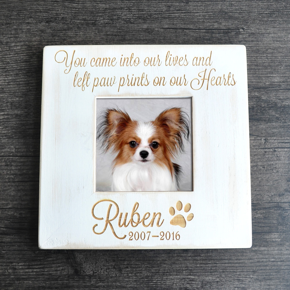 Buy pet memorial frame and get free shipping on AliExpress.com
