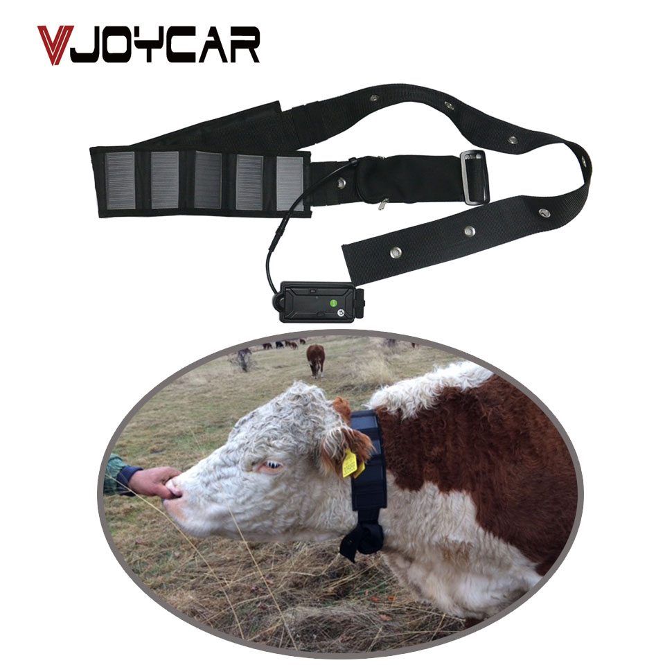 VJOYCAR T500S Big Battery Power and Solar Panel Collar Cow GPS Tracker For Cattle Horse Camel Big Hunting Dog Animal Rastreador