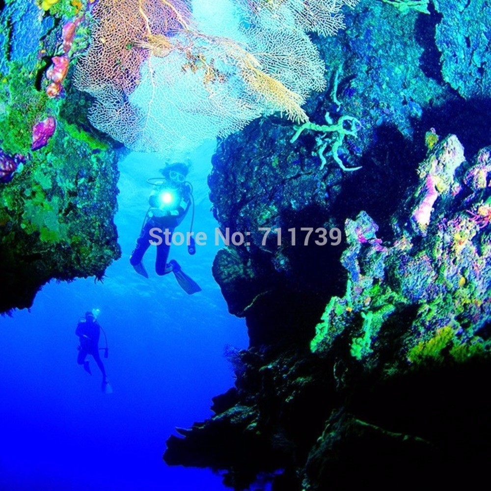 D01 diving flashlight (10)