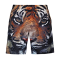 Men 3D Animal print beach shorts brand boardshort tiger shorts homme quick dry bermudas masculinas de marca mens shorts