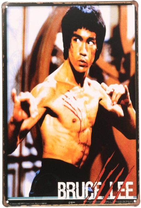 Free shipping 1pc Bruce Lee vintage Martial Art Tin plate tin Sign Bar Pub wall Decoration movie Kung Fu Retro Metal Poster