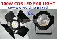 8xLot 2019 Stage Lighting Equipment 100W Cob Led Par Light White and Warm White Led Cob Par Can DJ Disco DMX For Theater Wedding