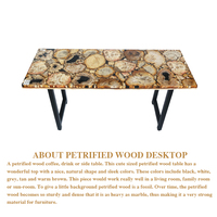 40kg To 58kg Natural Petrified Wood Fossil Tabletop Retro And Nostalgic Style Home Furnitures Tabletop Surface