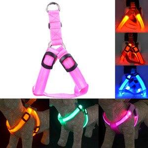 Image 5 - Arnés para perro o gato LED de nailon recargable, arnés de seguridad para mascotas, Led luz intermitente, Correa Led, cinturón, accesorios para perros