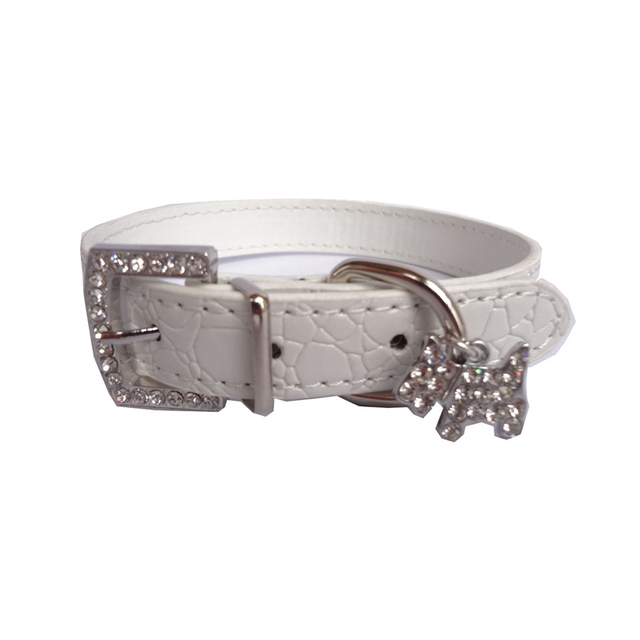 Dog Collar Fashion 6