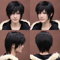 Synthetic Black Cosplay Straight Short Wigs NWG0CP60353-BL1