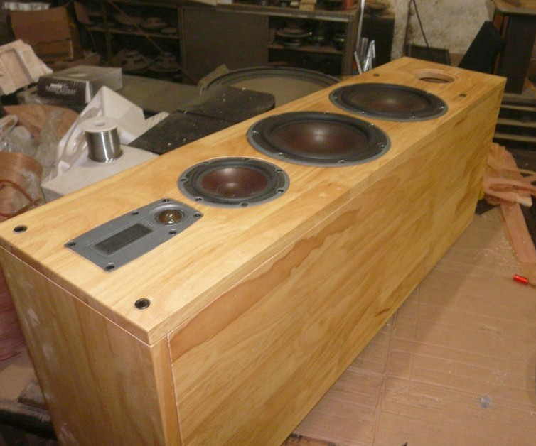 Dani buyers custom 8-inch oak wood floor speakers + Divide HIFI