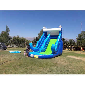 PVC inflatable water slide inflatable pool one lane kids outdoor dolphin slide with blowers free ocean shipping