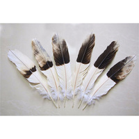 12pcs 100% natural eagle white and black feather 30 40cm/12 16inch for Diy carnival costume mask headdress
