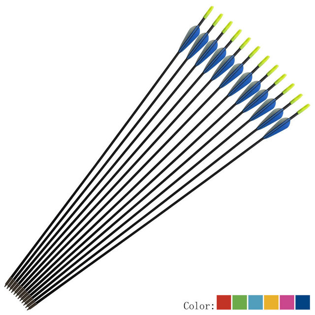 6/12 pcs 31 Inch Fiberglass Arrow Spine 800 with Arrowhead for Shooting Hunting Compound Recurve Archery Hunting Bow