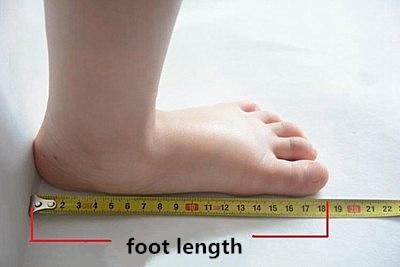 foot length_副本