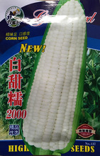 1 original pack 25g 30+White waxy corn seeds,Sweet glutinous fruit corn Green Healthy Delicious Food free shipping
