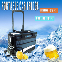 Portable Car Refrigerator Mini Lever Cold and Warm Dual Use 12V 12L AutoTruck Home Freezer Travel Car Refrigerator Cooling