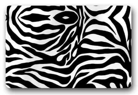 Custom Doormat Black White Zebra Pattern Carpet Bedroom Zebra Rugs Bathroom  Doorway Mats Funny Lounge Cushion Decoration  D-231  099363a73e7