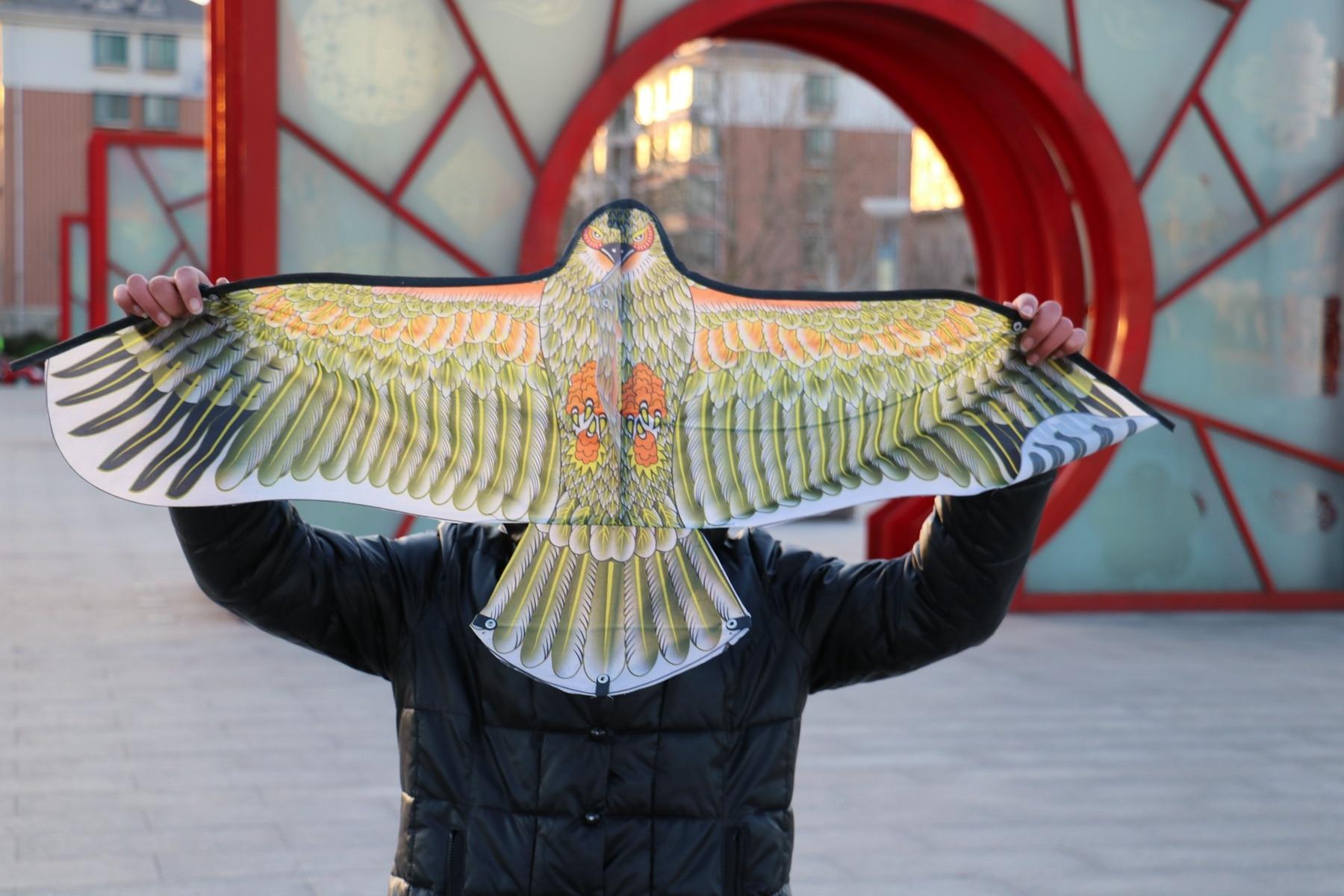 1 kos naključne barve DIY Eagle Kite slikanje kajta letenje brez ročaja linije zunanje igrače letenje Papalote igrače kite Fly a zmaj