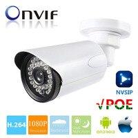 HD 1080P 2MP IP Camera POE Waterproof Outdoor Camera ONVIF IR CUT Night Vision P2P Plug