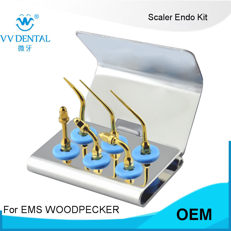 2 pièces SREKG SIRONA Détartreur Endo Kit AVEC rotatif dentaire instruments dentaires à la maison des outils DE LA CHINE fabricants de produits dentaires