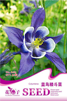1 Lot The full range of 50 Seeds Bluebird Aquilegia Flowers Potted beds A189 Free shipping