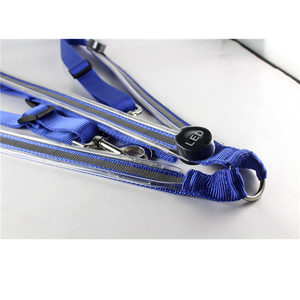 Image 5 - Rechargeable LED Cheval Harnais Colliers multi couleur En Option Double LED Fortes Lumières Cavaliers de Sécurité Déquitation Licols Un