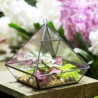 Indoor Tabletop Hanging Vertebral Succulent Fern Moss flower Geometric Glass Planter Pot Micro Garden Landscape Bonsai Terrarium