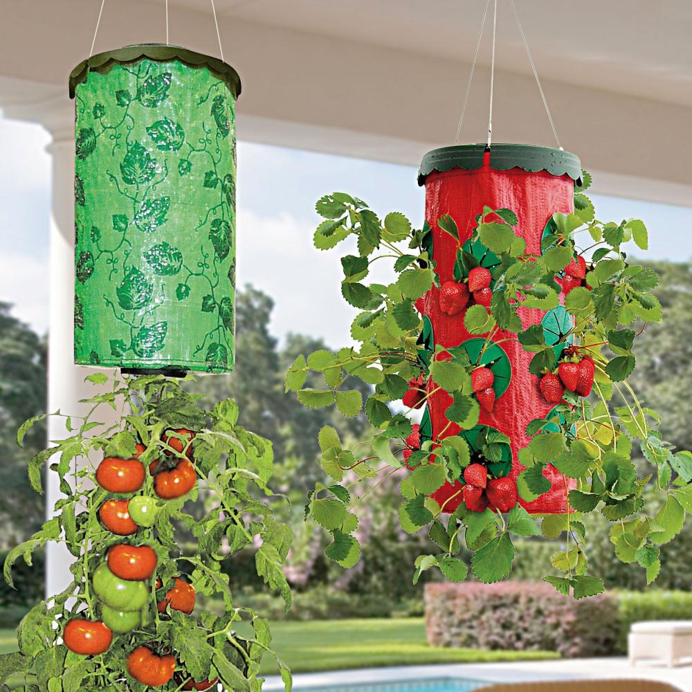 Vertical Tomato Gardening: Vertical Garden Wall Planter Grow Bag Planter Wall Planter