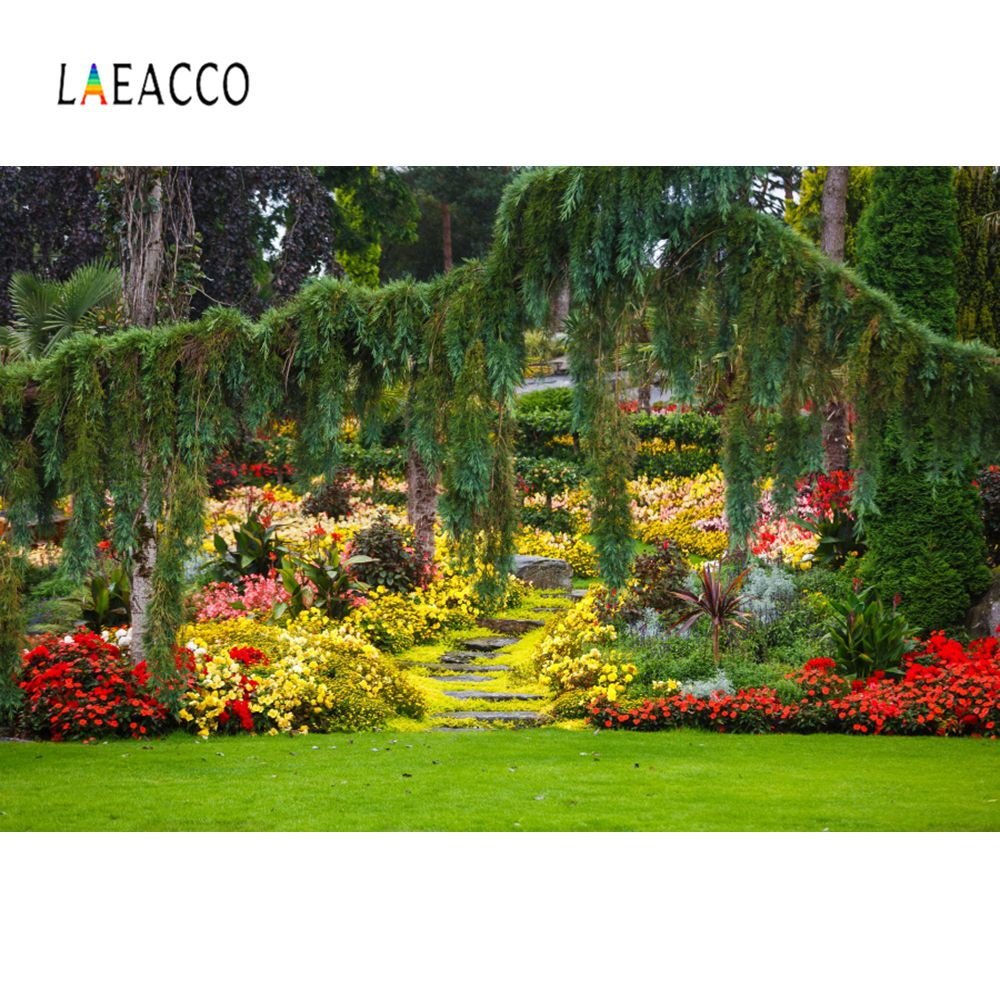 Laeacco Green Grass Lawn Tassel Blossom Flower Vine Tree Garden Natural Scene Photography Background Photo Backdrop Photo Studio in Background from Consumer Electronics